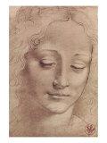 Testa di Giovinetta Premium Giclee-trykk av  Leonardo da Vinci