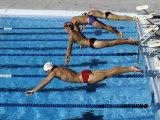 Swimmers Starting a Race Fotografie-Druck