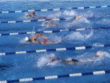 Swimmers Competing in a Race Fotografie-Druck