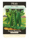 Pea Seed Packet Posters