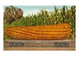 Giant Corn on Flatbed Juliste