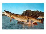 Giant Pike in Boat Plakat