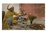 Malee, North African Jardiner con Ramos Arte
