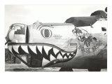Nose Art, Boise Bronc Prints