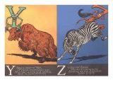 Yak and Zebra Plakat