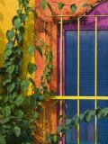 Colorful Building Detail, Barra De Navidad, Jalisco, Mexico Fotografisk tryk af Walter Bibikow