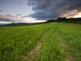 A farm road in Sabins Pasture in Montpelier, Vermont, USA Impressão fotográfica por Jerry & Marcy Monkman