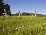 Hikeers walk in a field in Sabins Pasture, Montpelier, Vermont, USA Impressão fotográfica por Jerry & Marcy Monkman