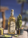 Tequila, Cabo San Lucas, Baja California, Mexico Photographic Print by Douglas Peebles