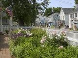 Shore Road, Ogunquit, Maine, USA Fotoprint van Lisa S. Engelbrecht