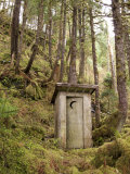 Outhouse in a Moss Covered Forest Fotografisk trykk av Michael Melford