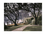 Villa in the Small Town of Roquebrune Photographic Print by Maynard Owen Williams