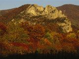 Seneca Rocks 900-Feet-High  with Trees in Autumn Hues
