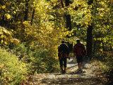 Two Men Walking a Gravel Road Through a Forest Impressão fotográfica por Raymond Gehman