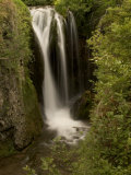 Roughlock Falls in Spearfish Canyon, Black Hills National Forest Stretched Canvas Print by Phil Schermeister