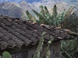Tile Roof in Vilcabamba, Ecuador Reproduction photographique par Scott Warren