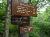 Signs Along the Appalachian Trail Photographic Print by Michael Melford