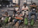 Five Boys Sit Together, Eating Large Watermelon Slices Fotografisk trykk av Edwin L. Wisherd