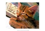 Kitten on Keys Posters por Robert Mcclintock