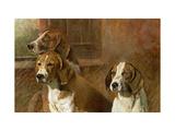 Hound Dogs Arte