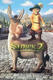 Shrek 2 Photo