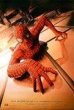 Spider-Man Planscher