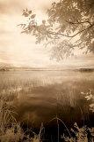 Peaceful Morning II Affiches par Monte Nagler