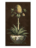 Potted Pineapple I Prints