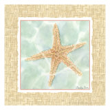 Ocean Starfish Print by Chariklia Zarris