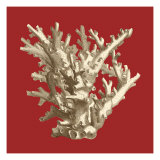 Coral on Red I Posters by  Vision Studio