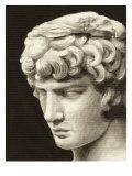 Roman Relic I Stampe di Ethan Harper