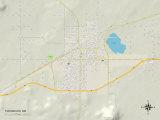 Political Map of Tucumcari, NM Plakat