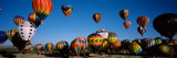 Albuquerque International Balloon Fiesta, Albuquerque, New Mexico, USA Photographic Print by  Panoramic Images