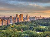 Central Park, Manhattan, New York City, USA Impressão fotográfica por Jon Arnold