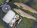 Two Fine Brown Trout Caught with Dapping Fly and Rod from a Boat on Loch Ba Impressão fotográfica por John Warburton-lee