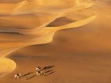 Tenere Desert, Camel Caravan Travelling Through the Air Mountains and Tenere Desert, Niger Fotografie-Druck von Paul Harris