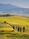 Farmhouse, Val D' Orcia, Tuscany, Italy Photographic Print by Doug Pearson