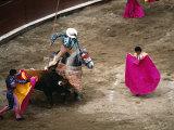 Crowds at a Stadium for a Bullfight, Quito, Ecuador Fotografie-Druck von Paul Harris