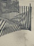 New York, Long Island, the Hamptons, Westhampton Beach, Beach Erosion Fence, USA Photographic Print by Walter Bibikow