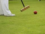 Playing Croquet, Devon, England Fotografisk trykk av Peter Adams