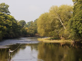 Salmon Fisherman Casting to a Fish on the River Dee, Wrexham, Wales Fotografisk tryk af John Warburton-lee