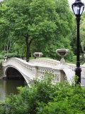 Bow Bridge, Central Park, Manhattan Impressão fotográfica por Amanda Hall