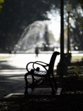 Hyde Park, Sydney, New South Wales, Australia, Pacific Photographic Print by Mark Mawson