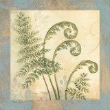 Leaf Botanicals IV Affiche par Pamela Gladding