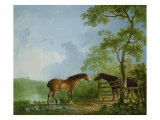 Mare and Stallion in a Landscape Giclee Print by Sawrey Gilpin