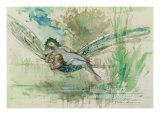 Dragonfly, c.1884 Giclee Print by Gustave Moreau
