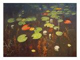 Water Lilies 1895 Giclée-tryk af Isaak Ilyich Levitan
