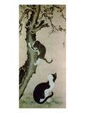 Cats, 17th century Giclée-tryk af  Pyon Sang-Byok