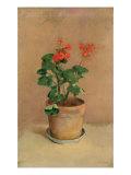 Geraniums in a Pot, c.1905 Giclée-Druck von Odilon Redon
