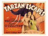 Tarzan Escapes, 1936 Posters